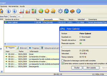 Free Download Manager - Interfaz