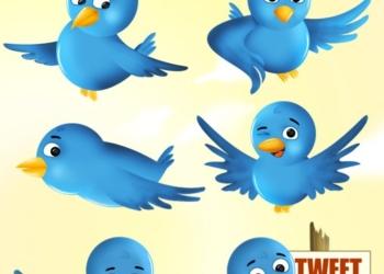 Free Twitter Bird Icon Set - Muestra