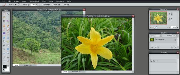 pixlr-interfaz