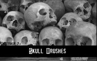 skulls-brushes-deviantart