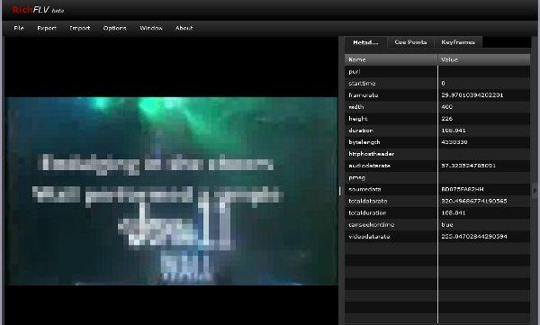 RichFLV - Interfaz