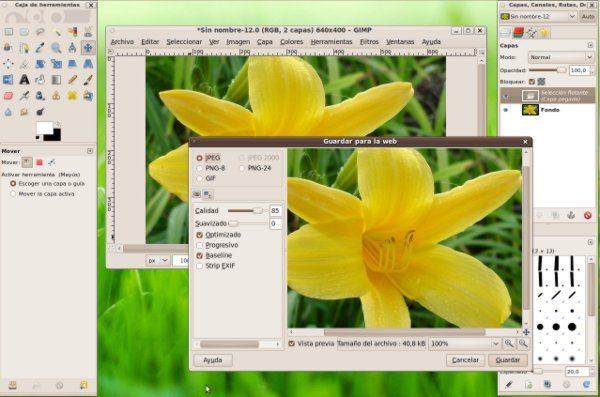 guarda-para-el-web-interfaz GIMP Plugin - Optimizar las imágenes para la web
