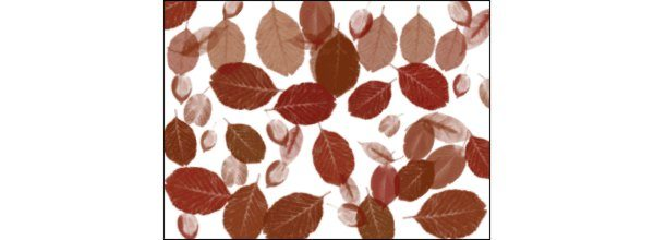 Autumn Leaves - Photoshop Brushes