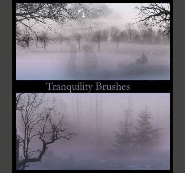 Tranquility Brushes Photoshop