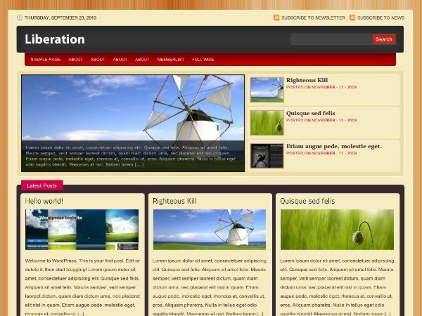 Liberation-free-wordpress-theme