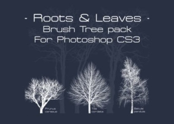 Root-and-leaves-free-brushes-photoshop-cs3