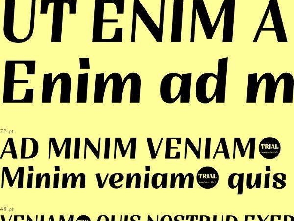 Trial-Sintesi-free-font