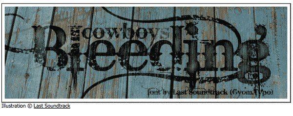 Bleeding-Cowboys-frre-font 10 Tipografías elegantes y modernas para descargar gratis (entrega 11)