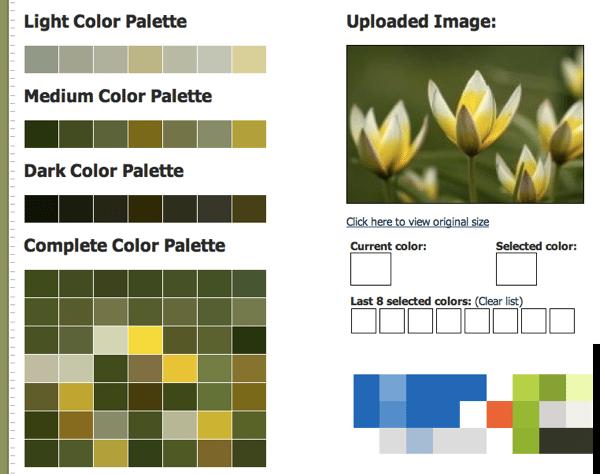 Color Pallete Generator, generador online de paletas de colores