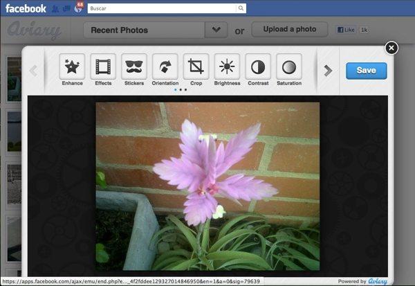 Aviary para Facebook - Editor de fotos