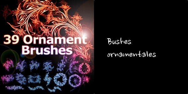 Ornament-brsuhes-photoshop 6 Packs de Brushes ornamentales gratuitas para Photoshop (y GIMP)